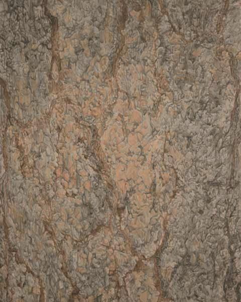 """TREE #4, ©2001 acrylic on panel 20"""" x 16"""""""