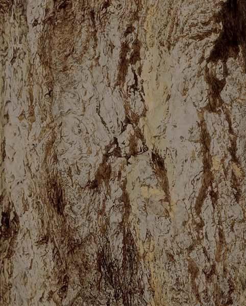 """TREE #5, ©2001 acrylic on panel 20"""" x 16"""""""